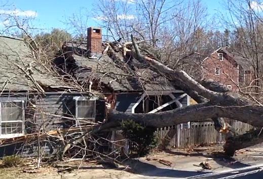 Hamilton MA wind damage claim