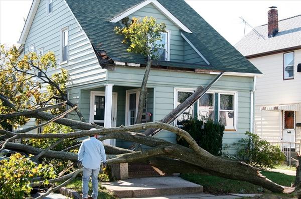 Lynnfield MA wind damage claim