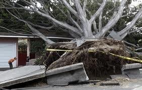 Recent Eastford CT roof damage claim