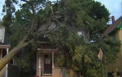 Recent Boxford MA wind damage claim