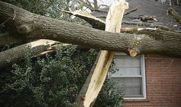 Recent Wellfleet MA major wind and roof claim