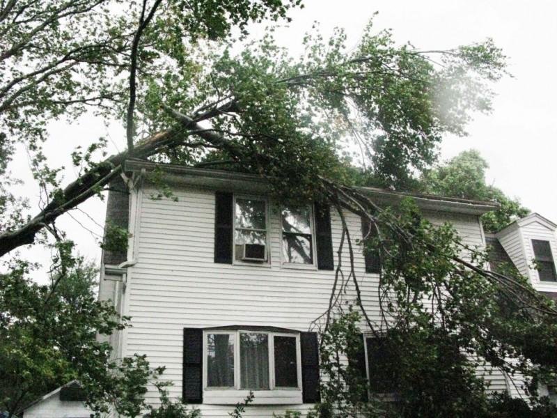 recent wind storm insurance cliam in braintree, ma.