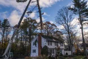 Colchester VT wind damage insurance claim