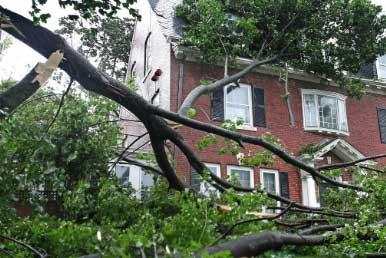 Shelburne VT wind damage insurance claim