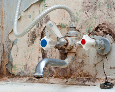 Palm Bay FL mold insurance claim