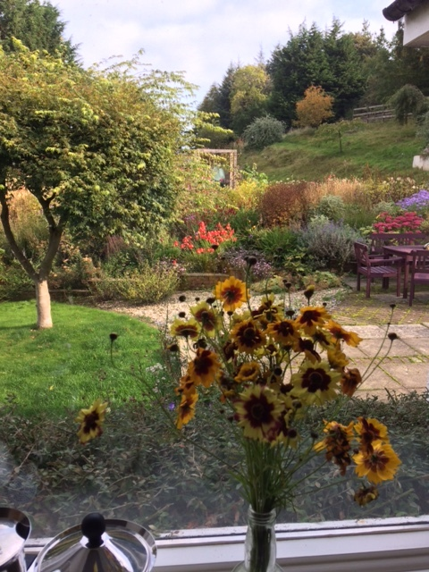 So much beauty outside our kitchen window. Autumn 2017