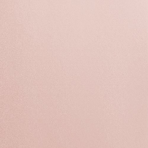 Le saviez-vous? - Voici quelques alternatives au cuir animal:Cuir de pommeCuir de cerealeCuir de champignonCuir de liègeCuir de raisinCuir de feuilles d'ananas / Piñatex