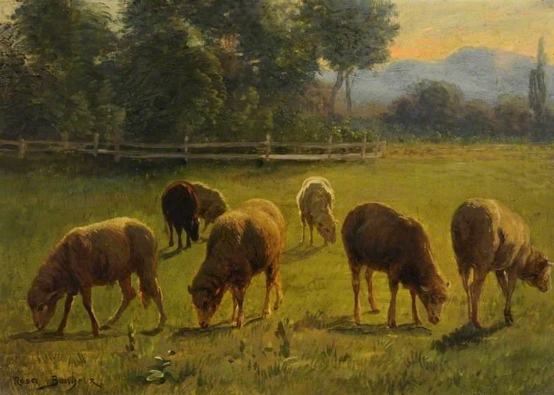 62A Bonheur, Sheep in a Landscape