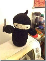 ninja4_thumb.jpg