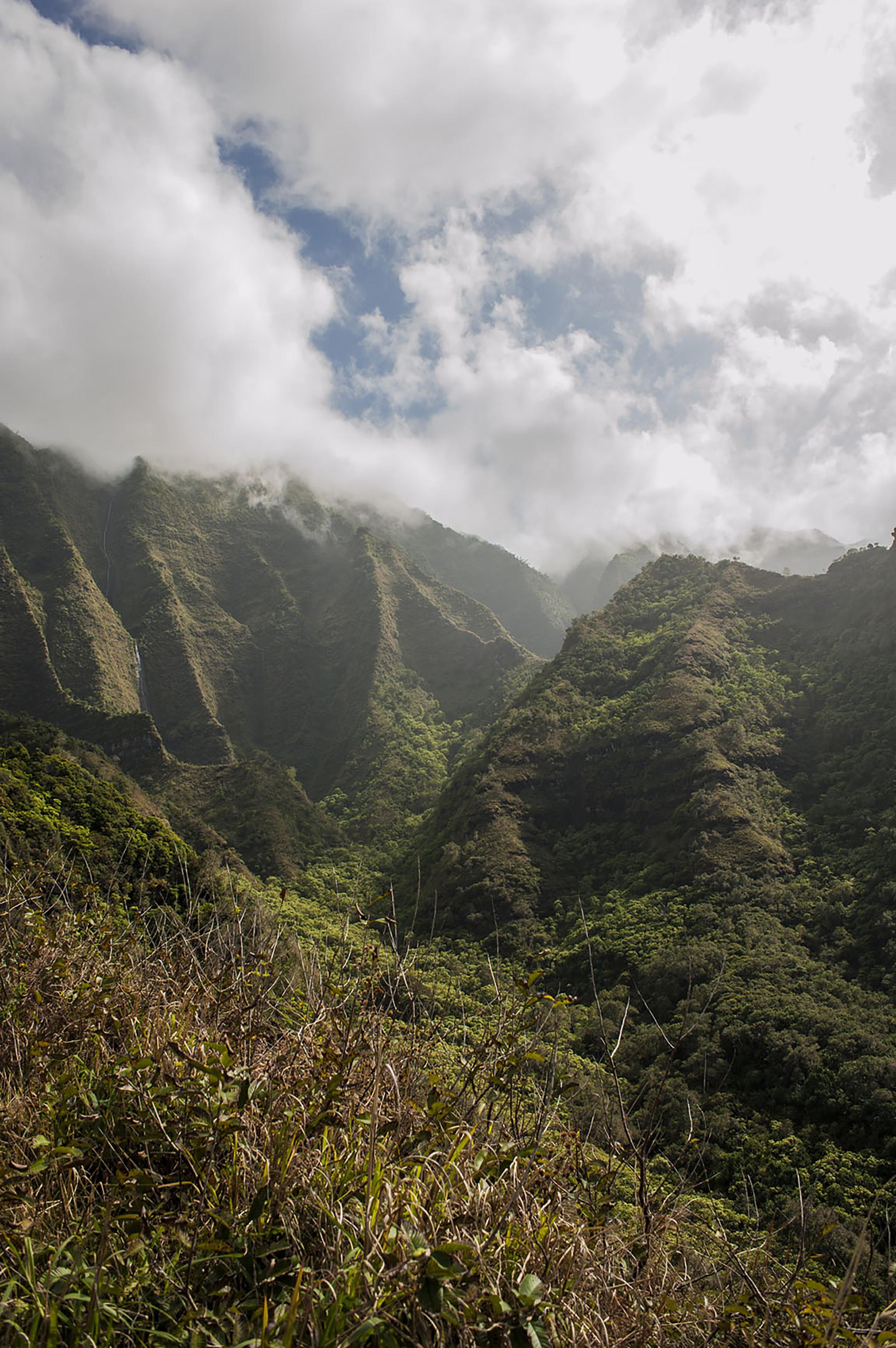 hawaii_17.jpg