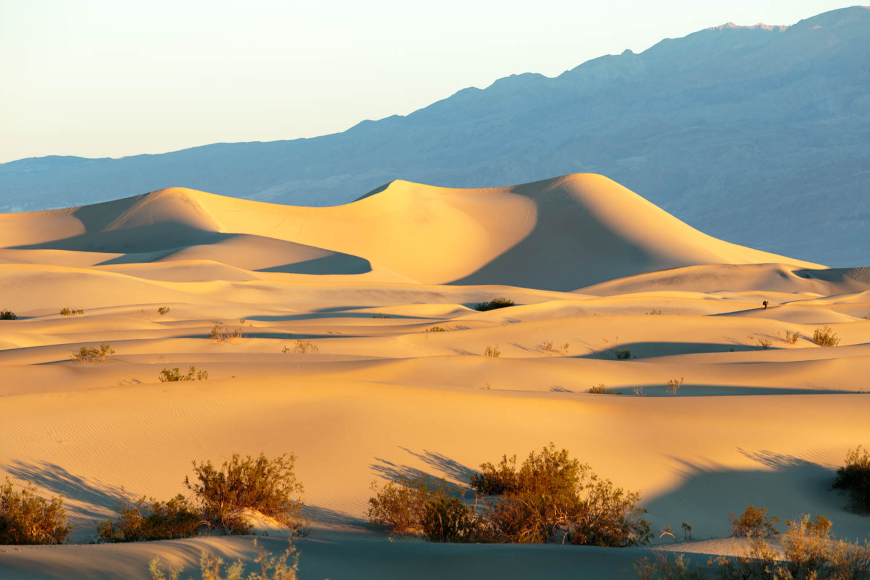 Mesquite Dunes Sunrise.