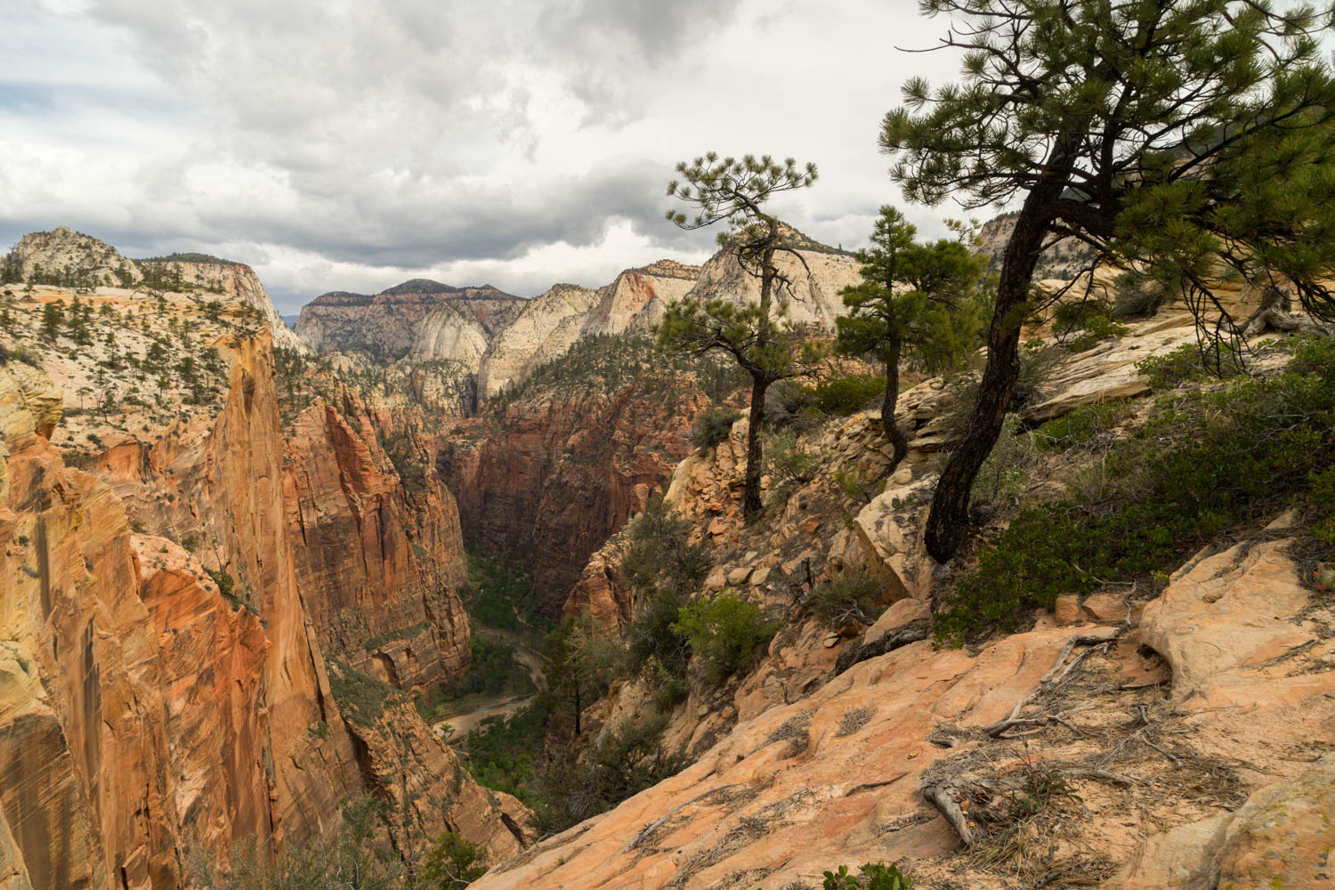 Zion Valley from West Rim Trail
