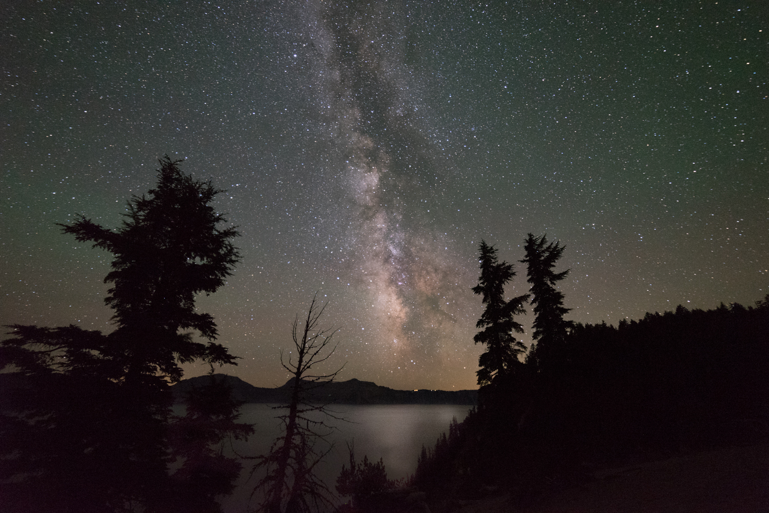 The Galactic Center of the Milky Way is framed by beautiful pine trees.