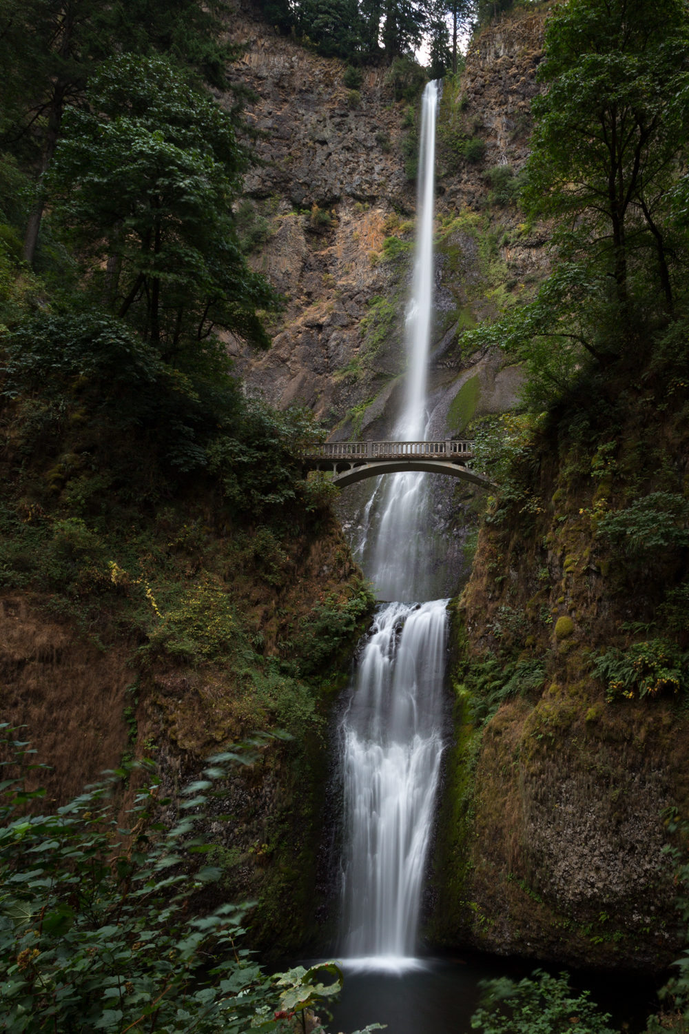 The full splendor of Multnomah Falls.  You can hike to the top of the falls...note the bridge.  You can get really wet there depending on the wind.