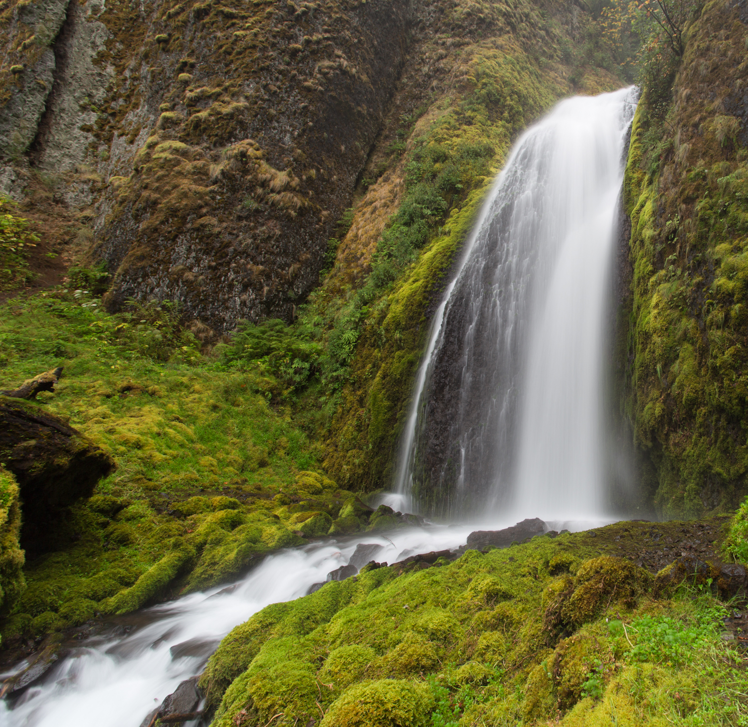 An Oregon waterfalls.  I think this is Wahkeena Falls but my notes are not good.  Along the Old Route 30 area in northwest Oregon.