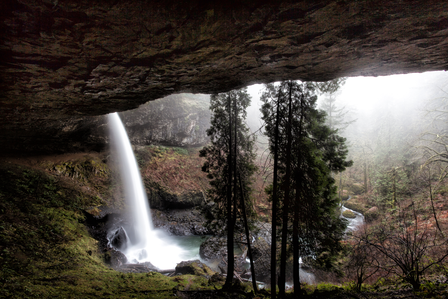 From underneath the North Falls in Silver Falls State Park outside of Salem, Oregon.