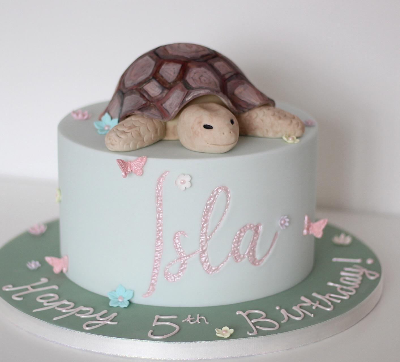 Tortoise-girls-birthday-cake-hampshire.JPG