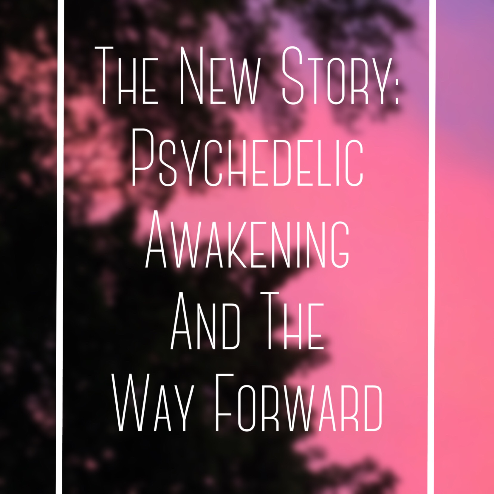 Episode #59 | The New Story: Psychedelic Awakening and the New Way Forward