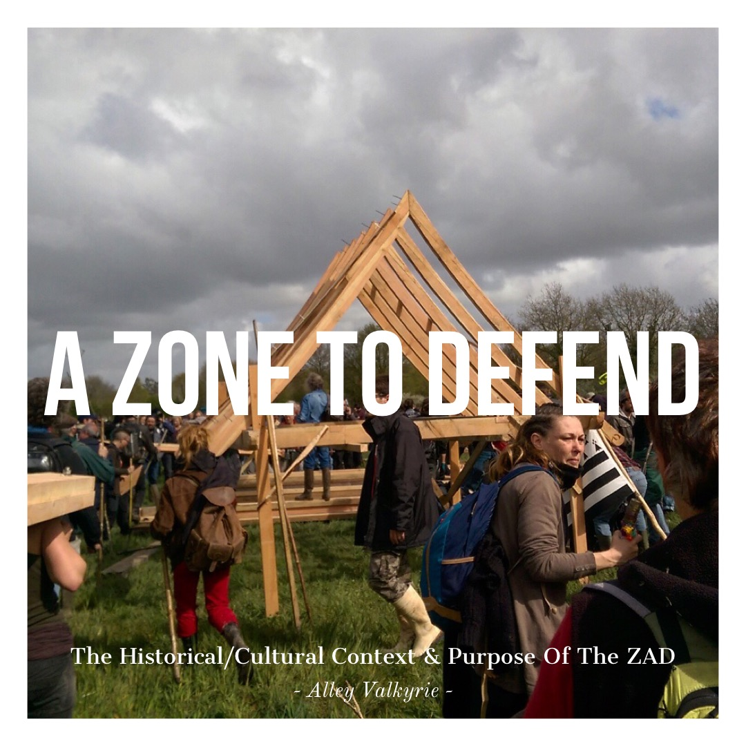 #116 | A Zone To Defend: The Historical/Cultural Context & Purpose Of The ZAD w/ Alley Valkyrie
