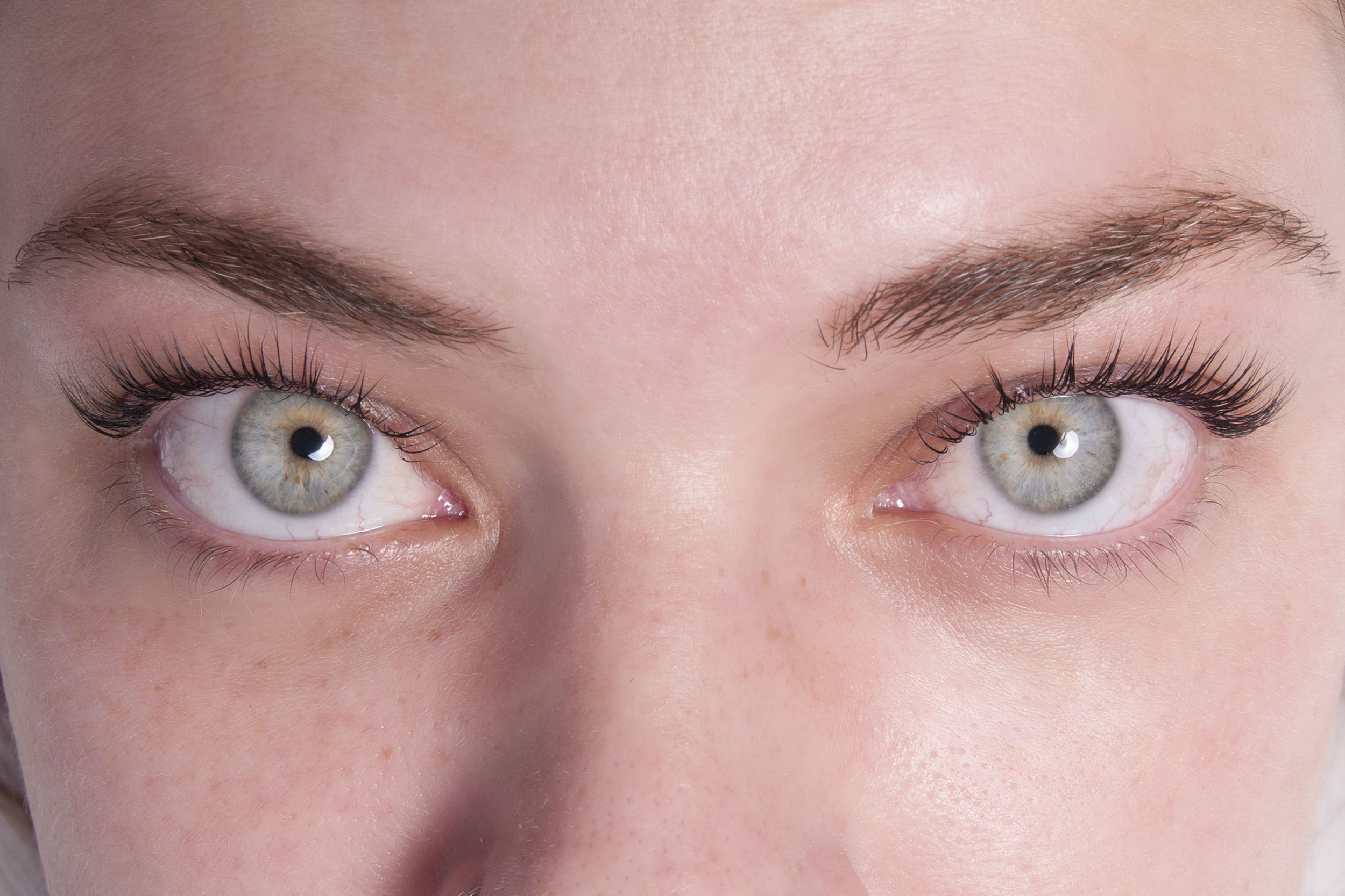 After a Lash Lift with Tinting