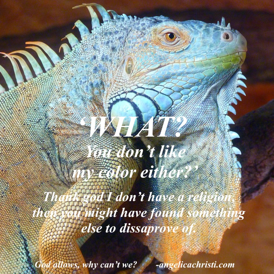 Instagram Angelica Color.jpg
