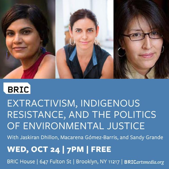 BRIC_Politics of Environmental Justice JPG.jpg