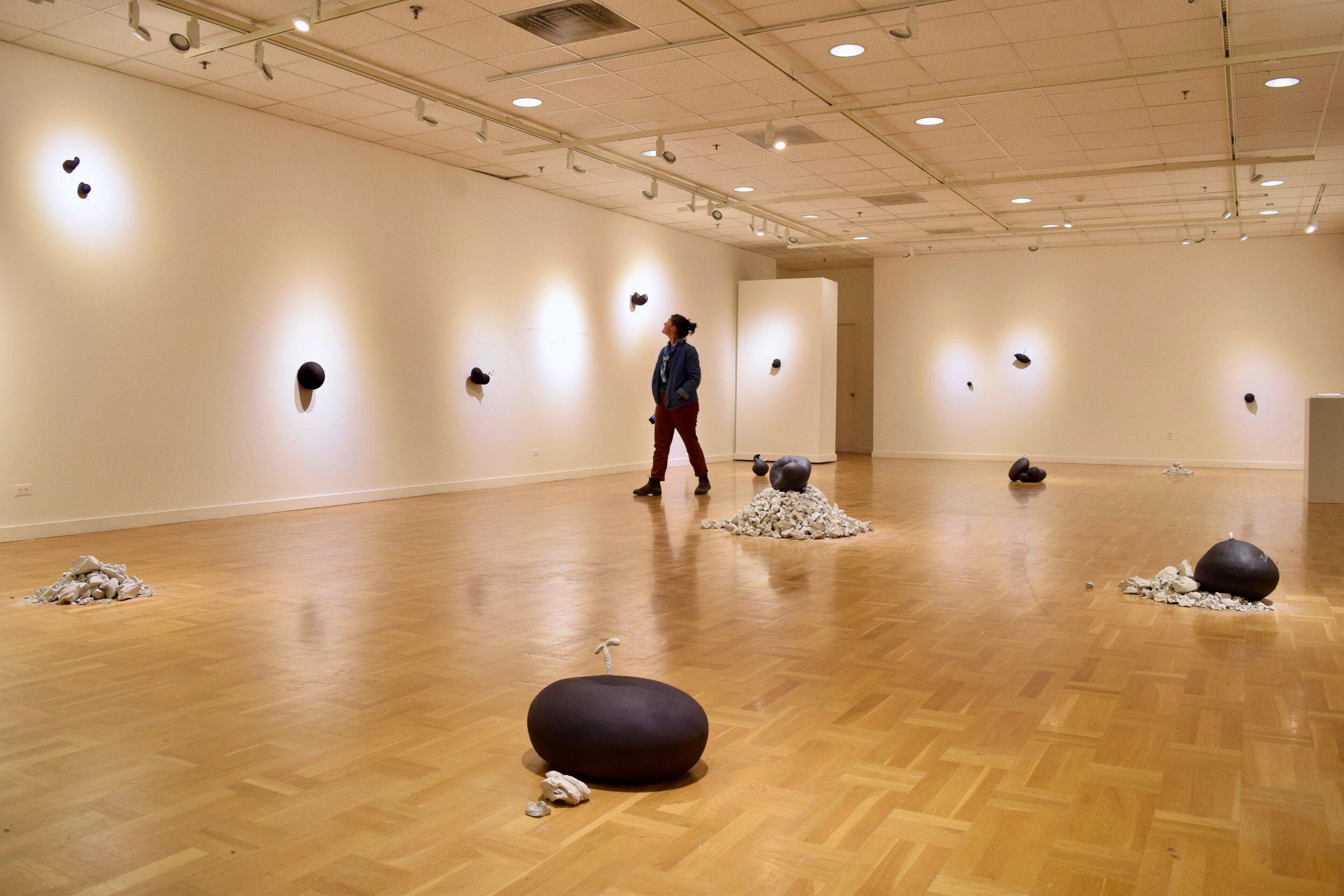 Reception, Gallery View, Vivas