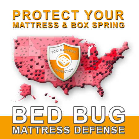 Protect Your Bed.jpg