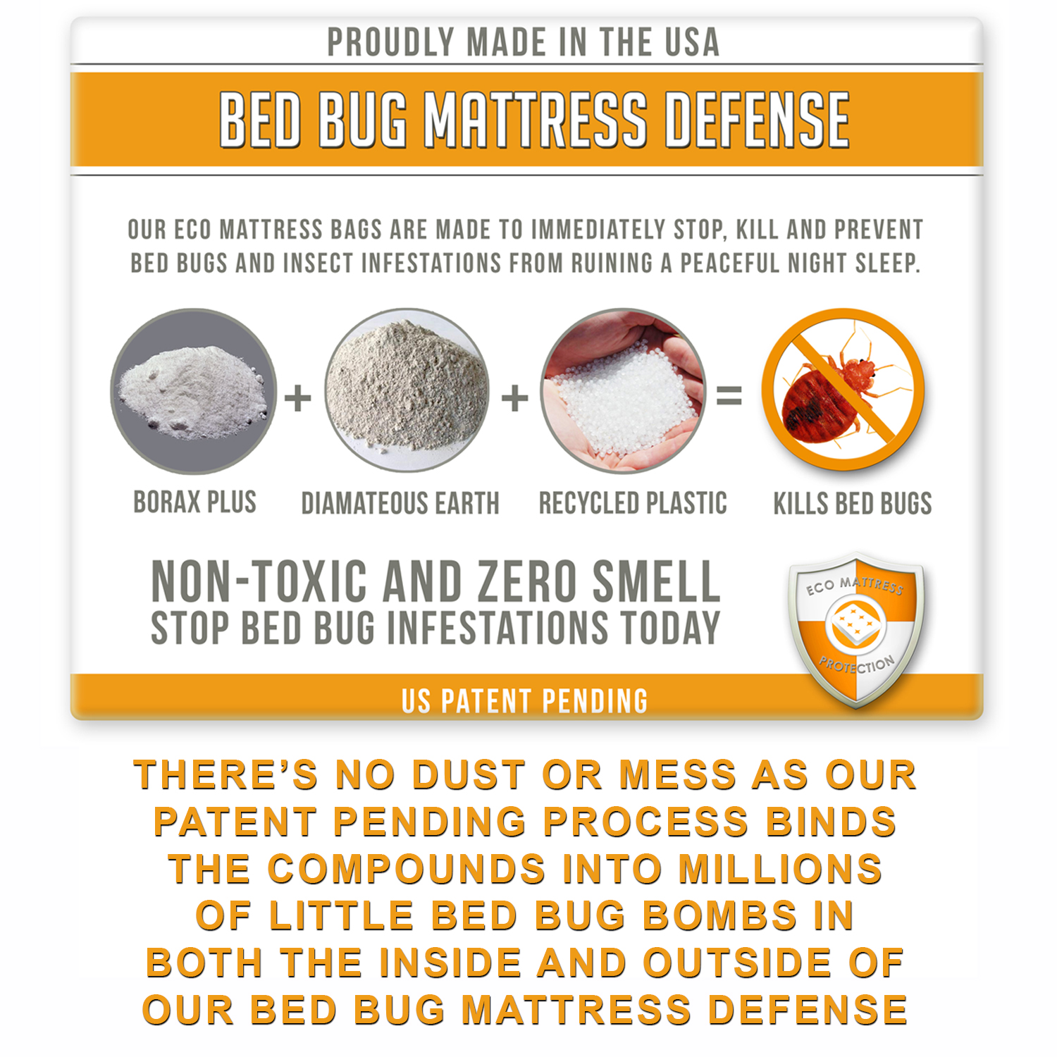 Bed Bug Page-02.jpg
