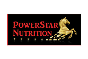 Powerstar logo.jpg