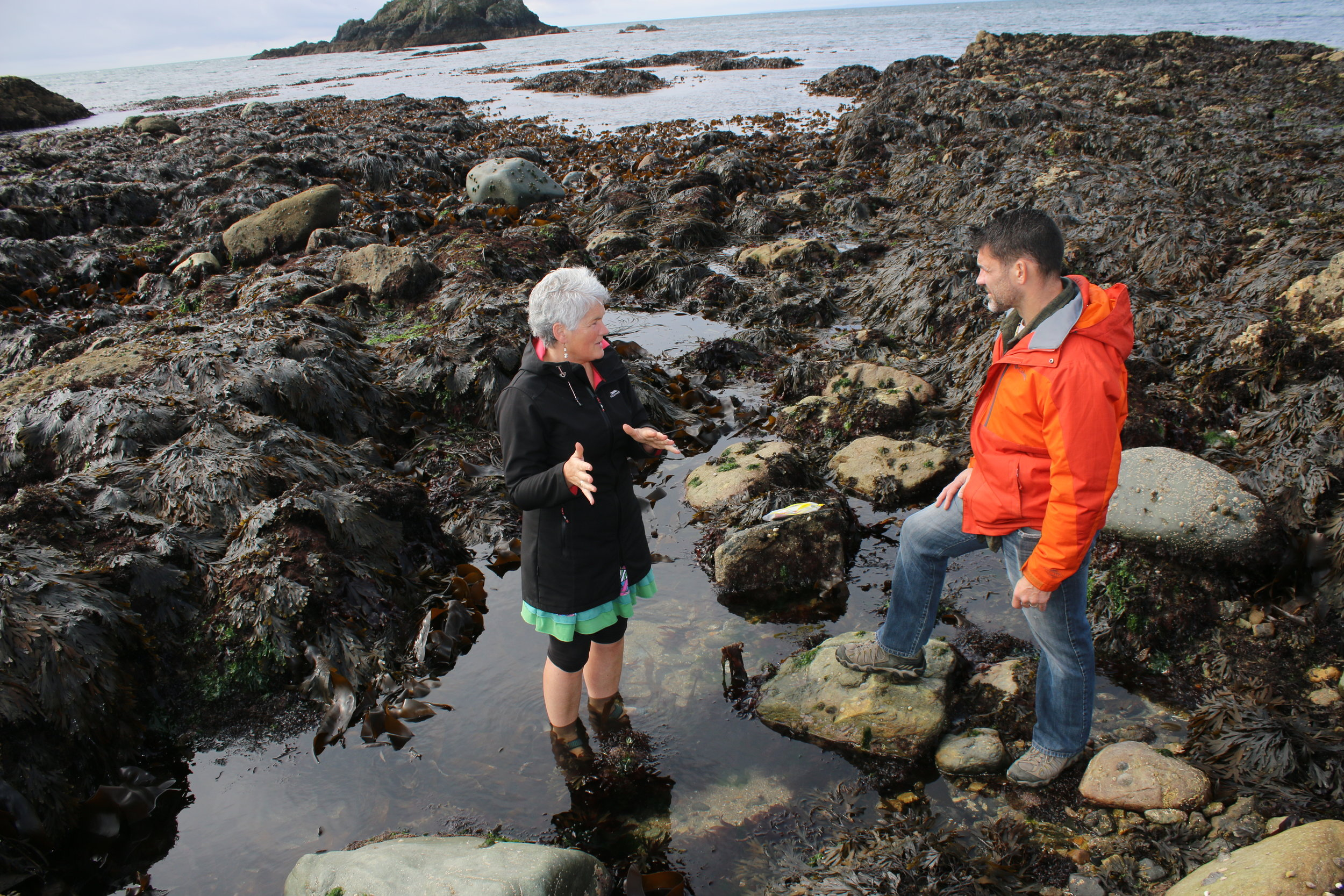 Marie & Bill discussing sea lettuce