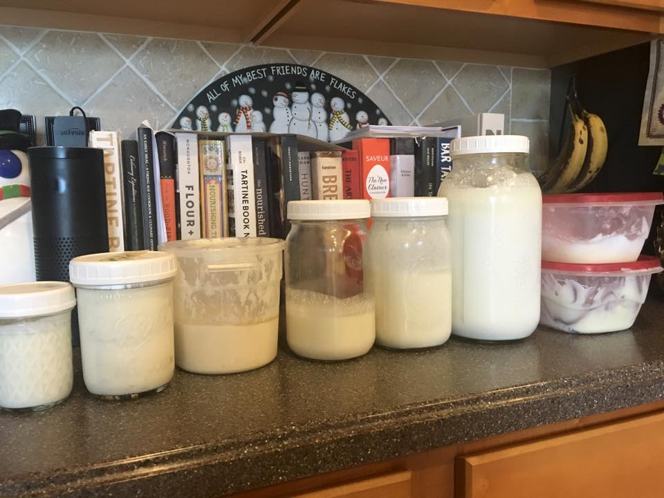 "My wife was cleaning out the fridge when I was away on a conference, and I got a text asking what all these ""white"" jars were! Doesn't everyone's fridge hold containers like this?"