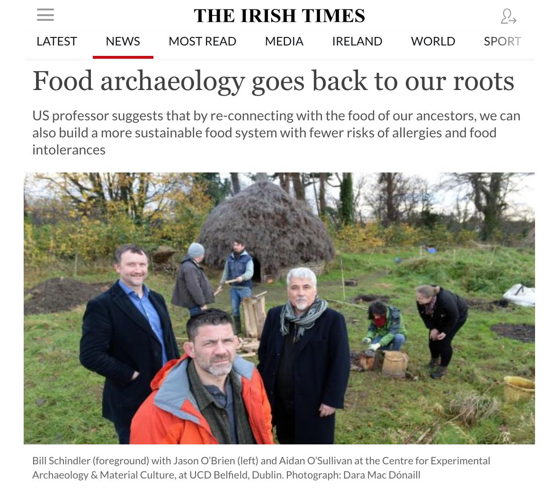 Irish Times Cover