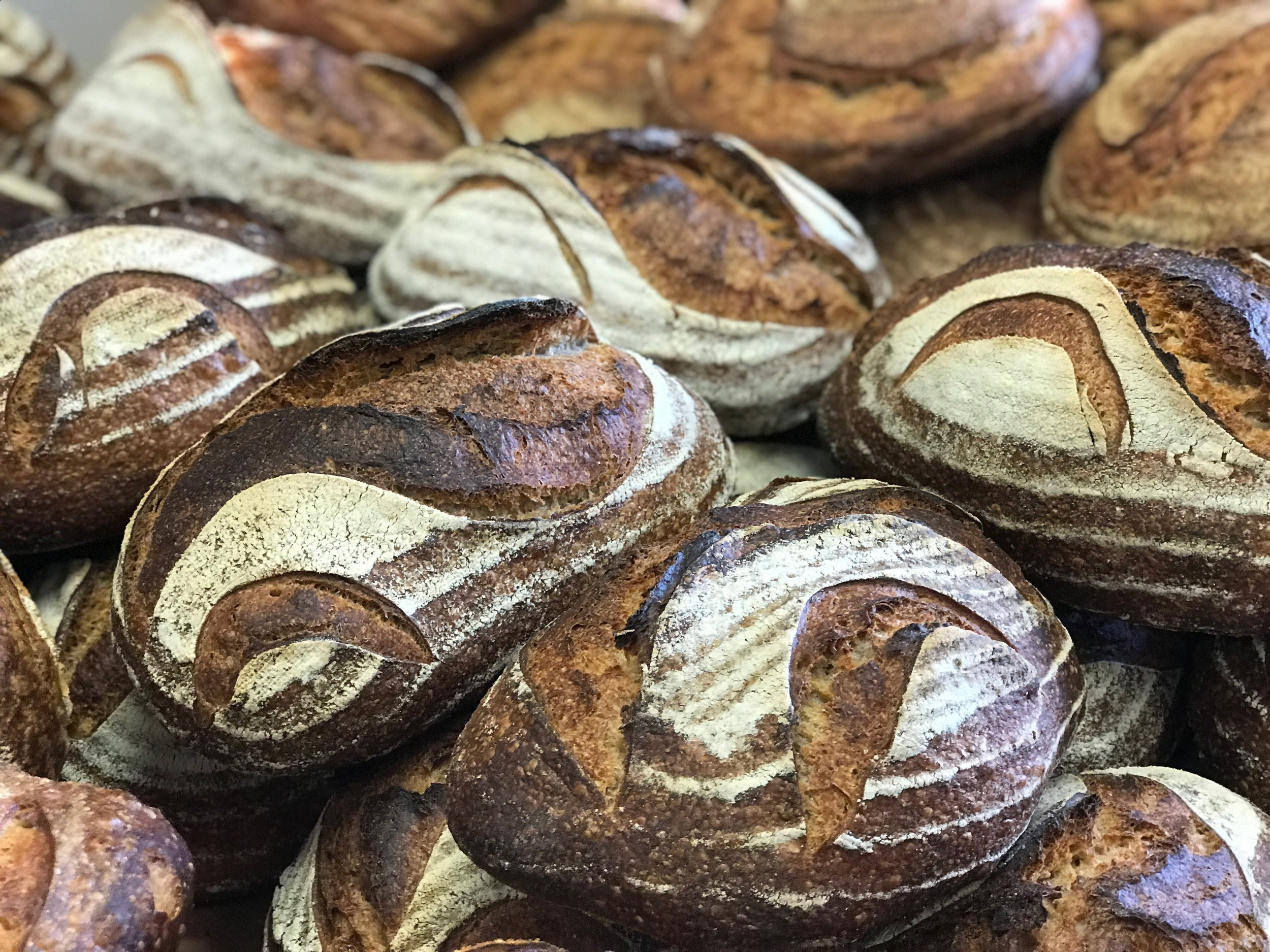 - This hands-on workshop will introduce Googlers to the complete process of making delicious sourdough bread at home