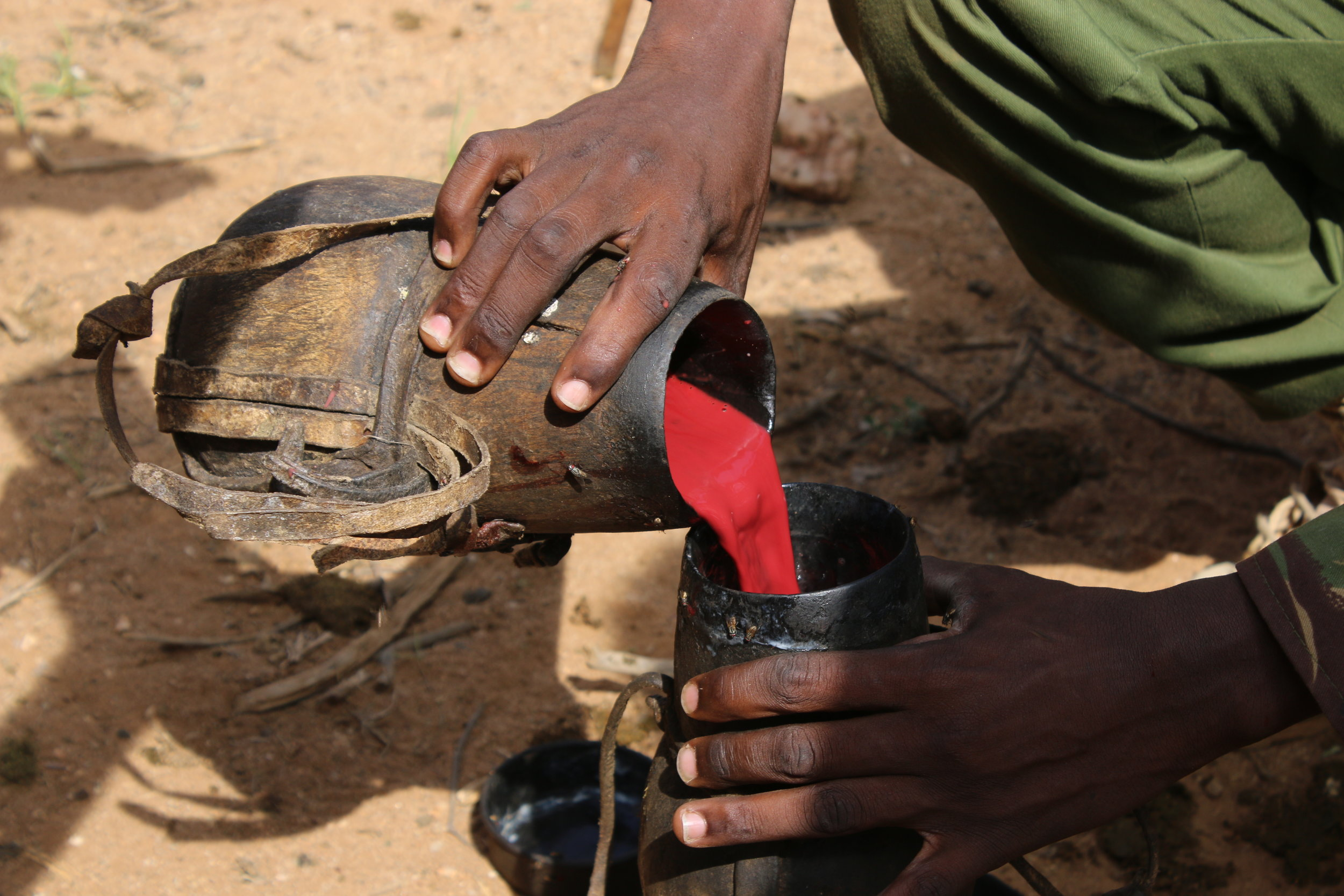 Stay tuned for the next blog from Africa . . . - Here's a hint to see what we drank with the Somburu!!