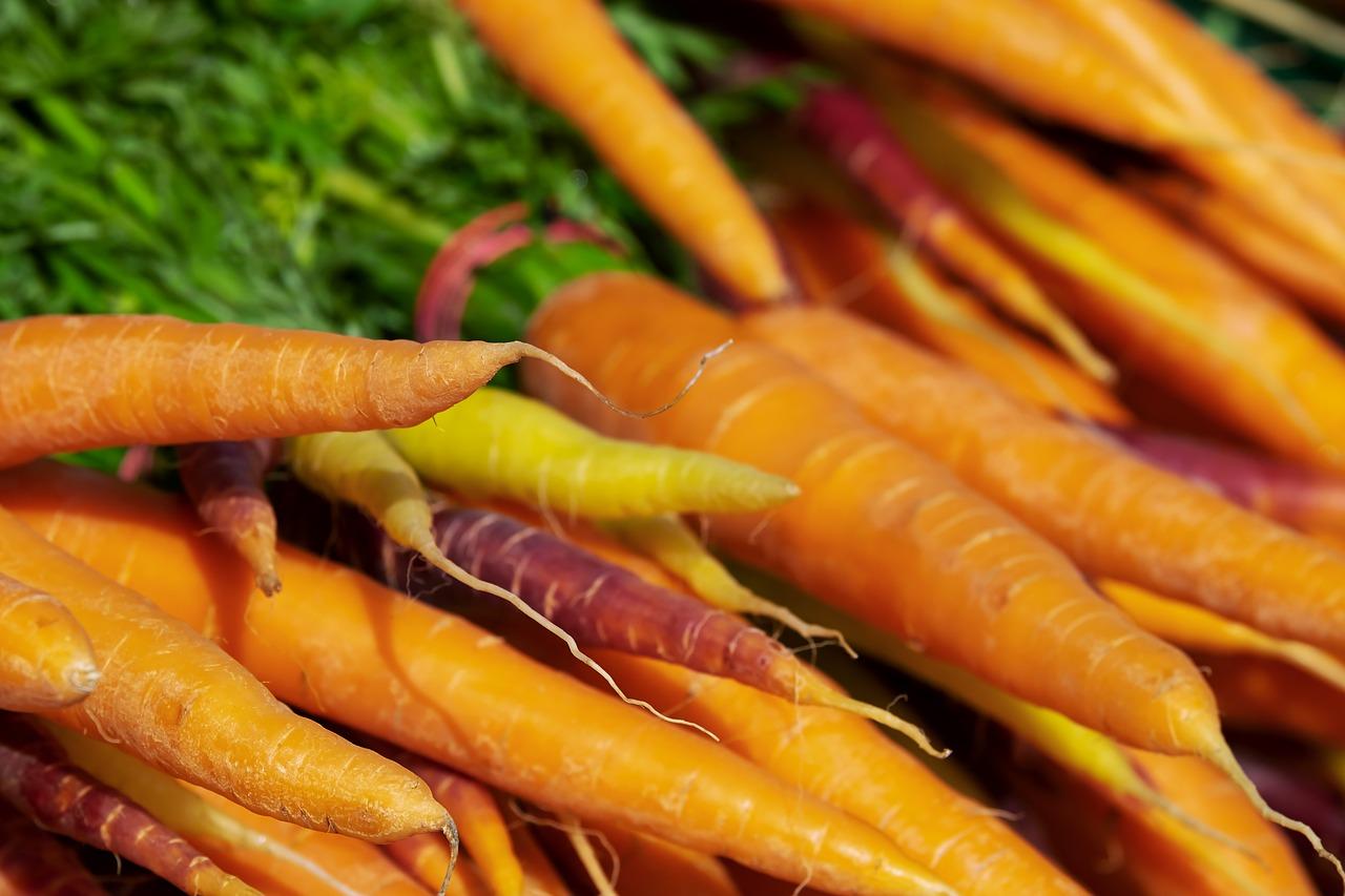 carrots-3440368_1280.jpg