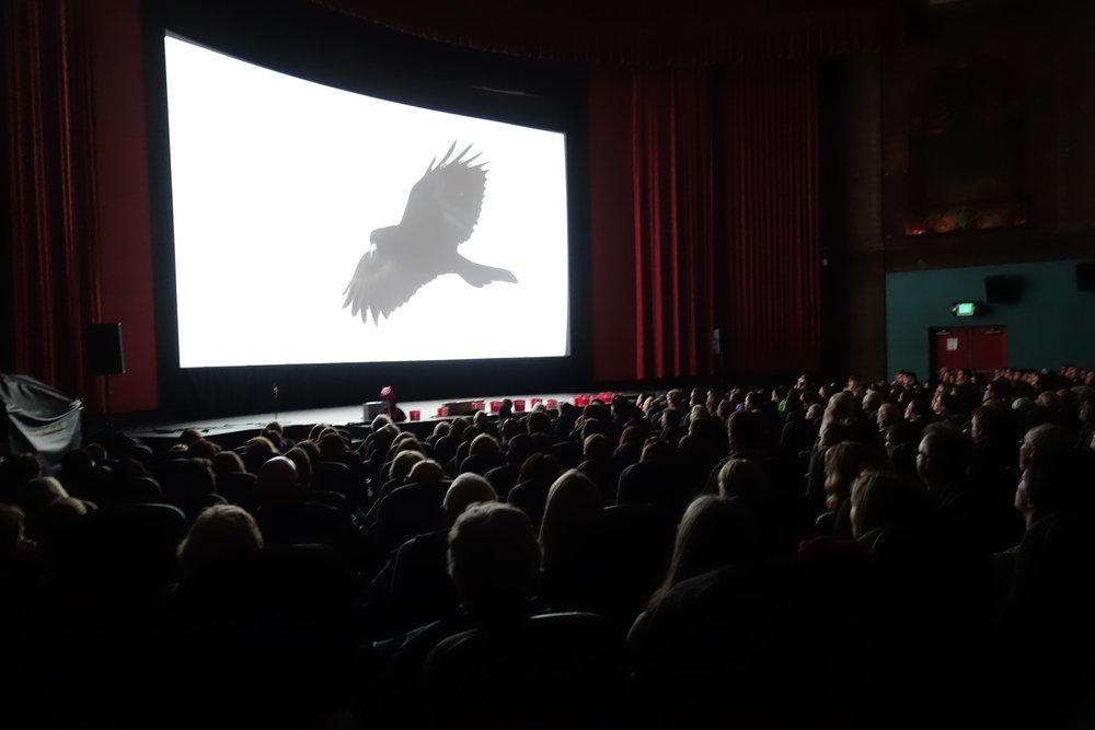 image credit: http://www.portlandecofilmfest.org/