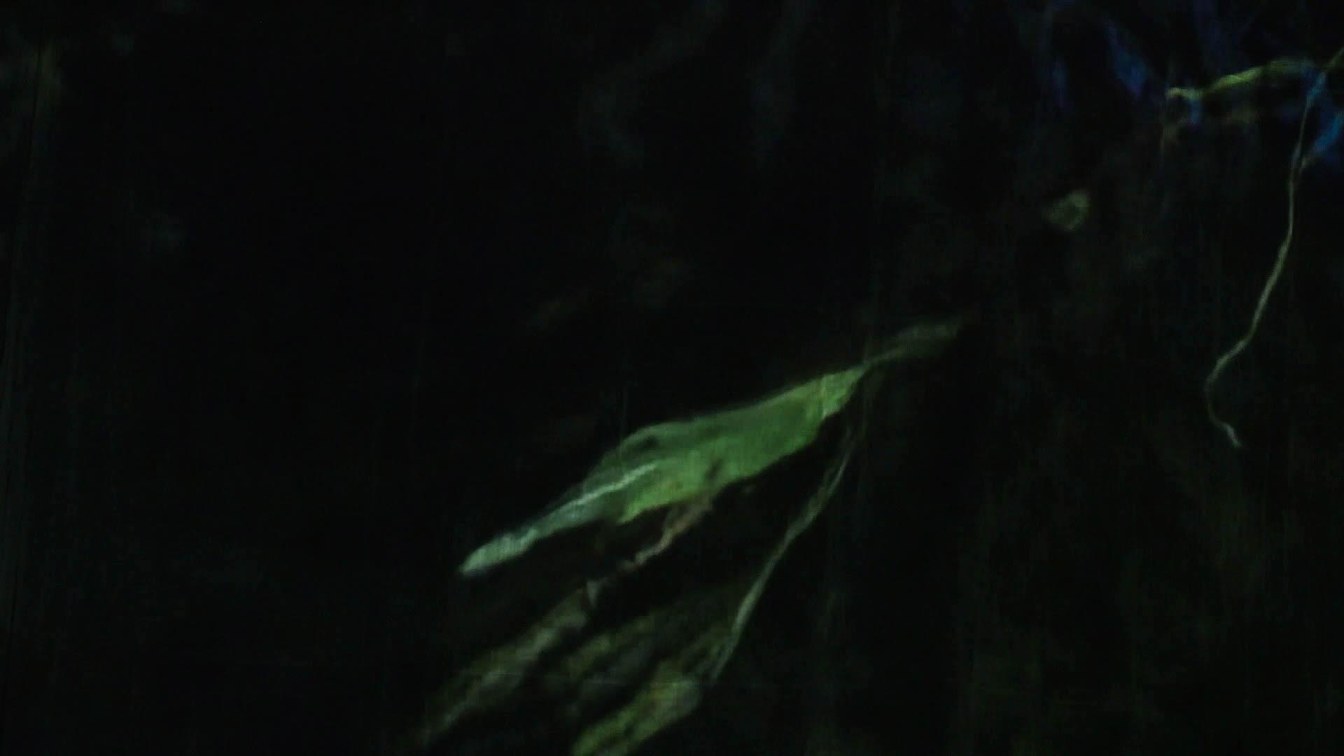 vlcsnap-2018-07-16-15h04m50s998.jpg