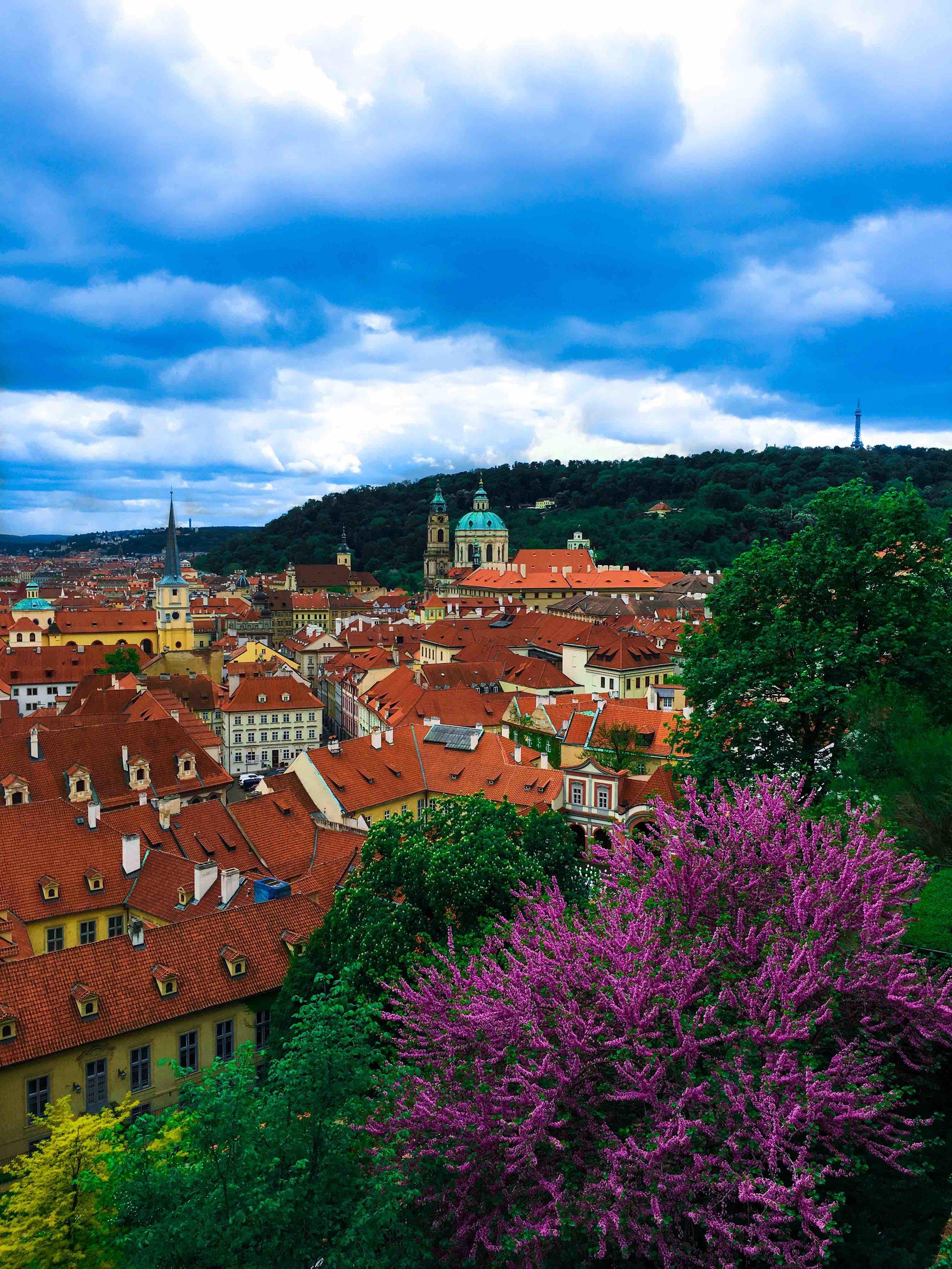 Prague Castle View.jpg