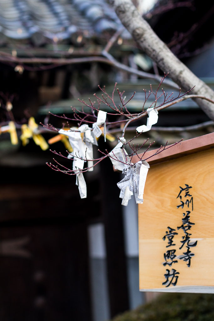 The prayers on paper and tied to the branches of the trees at the Zenkoji temple