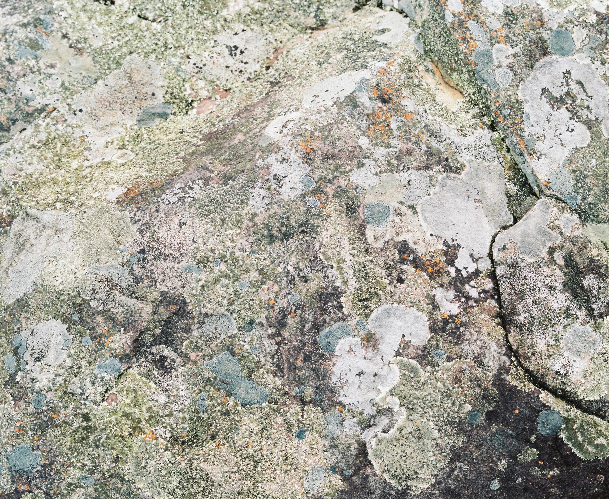 Moss_Rock_No_2.jpg
