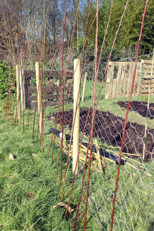 planning-a-vegetable-garden-00010.jpg