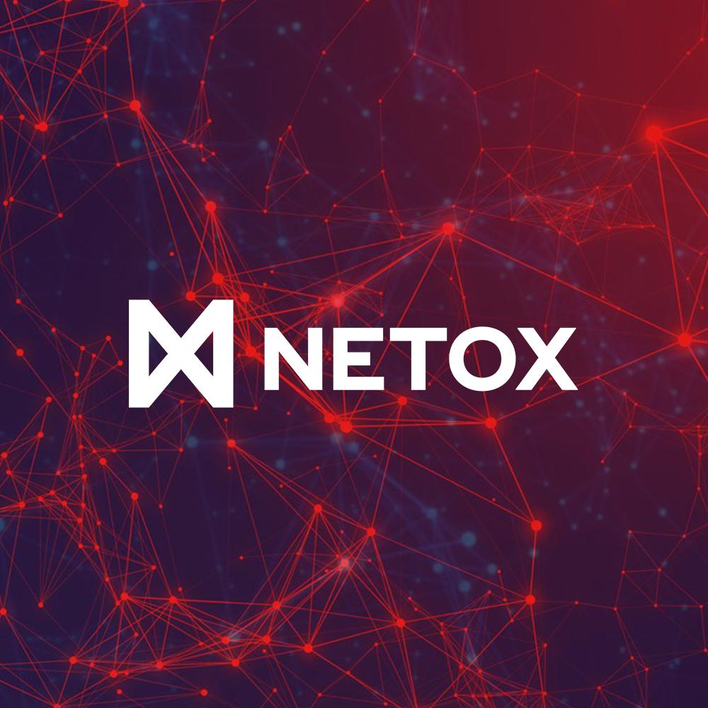 Netox Oy - Sijoitus tehty v. 2019