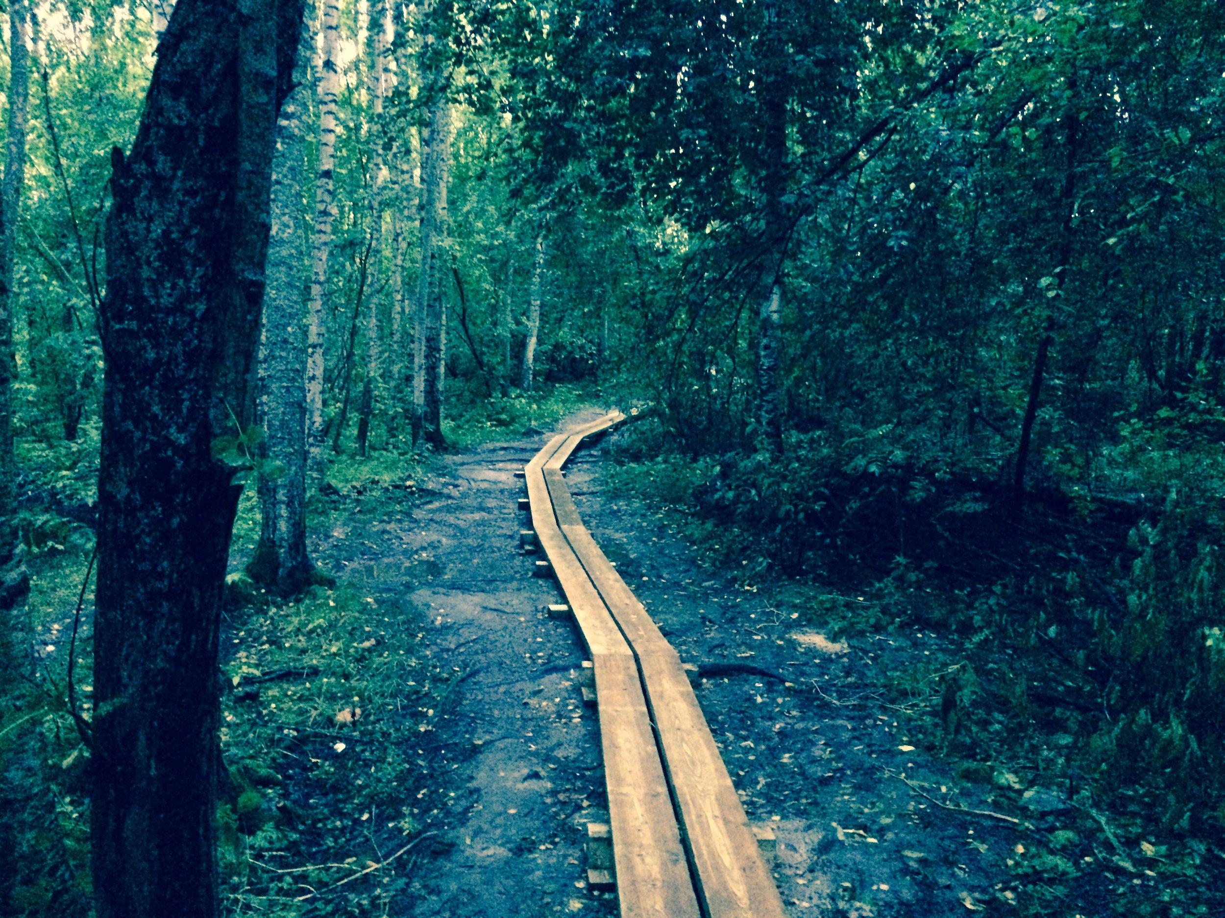 Kulkekoon polkusi läpi kauniiden maisemien ja suurien seikkailujen!