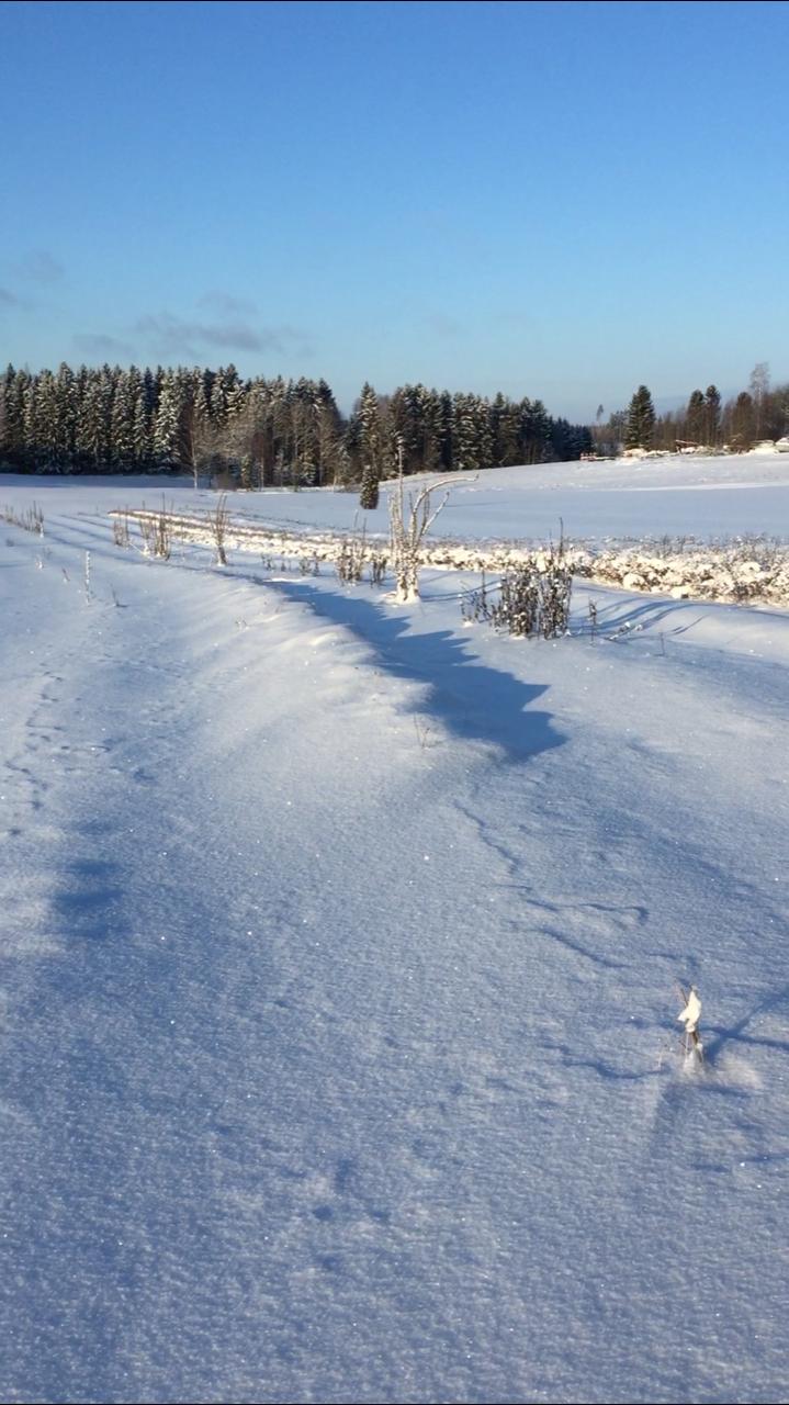 Yrttipellot lepäävät lumisen peiton alla.