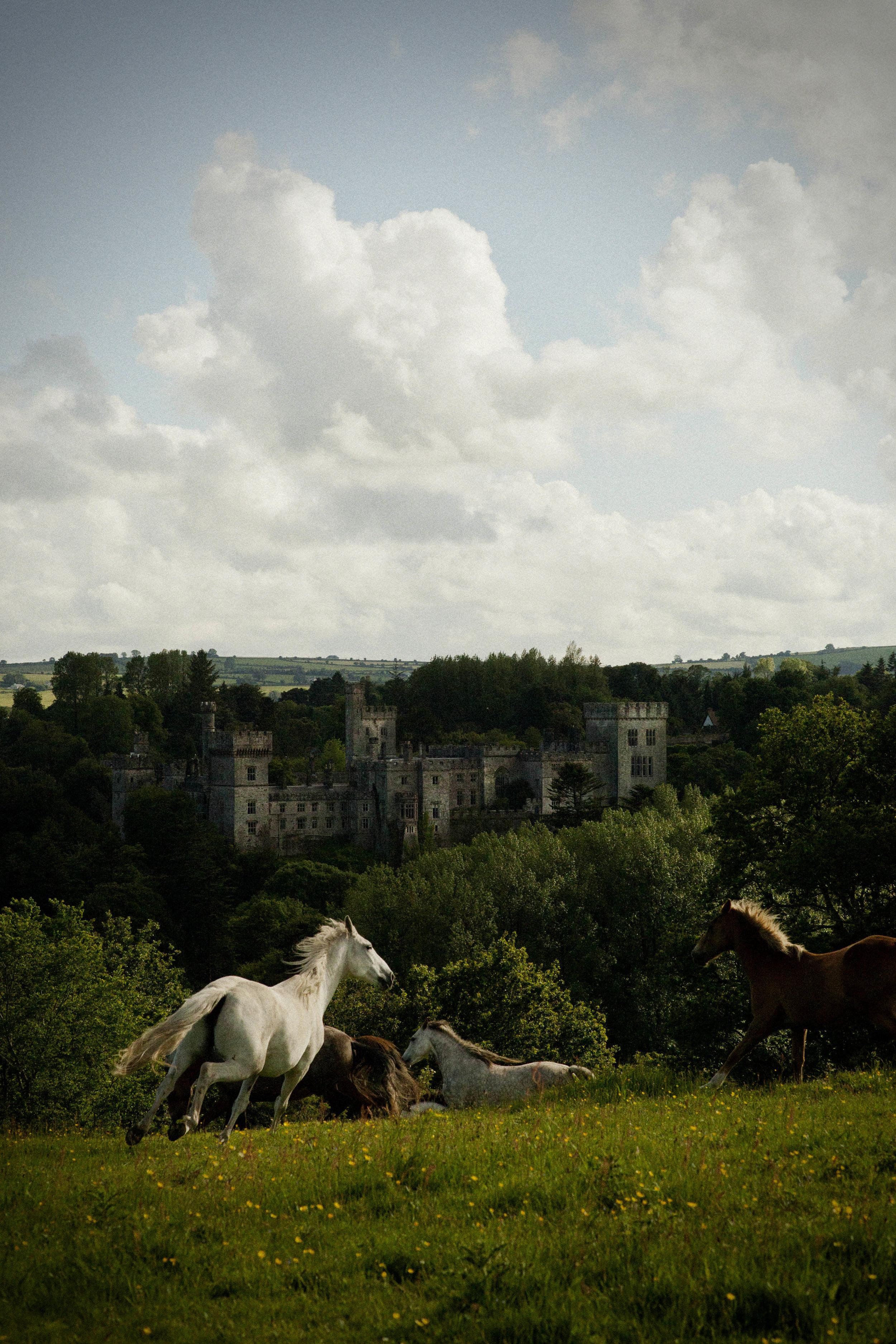 Lismore Castle 2.jpg