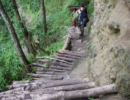 "Definitely one of the scariest paths on the Kanchenjunga trek.  I remember thinking, ""these logs don't seem to be anchored."""