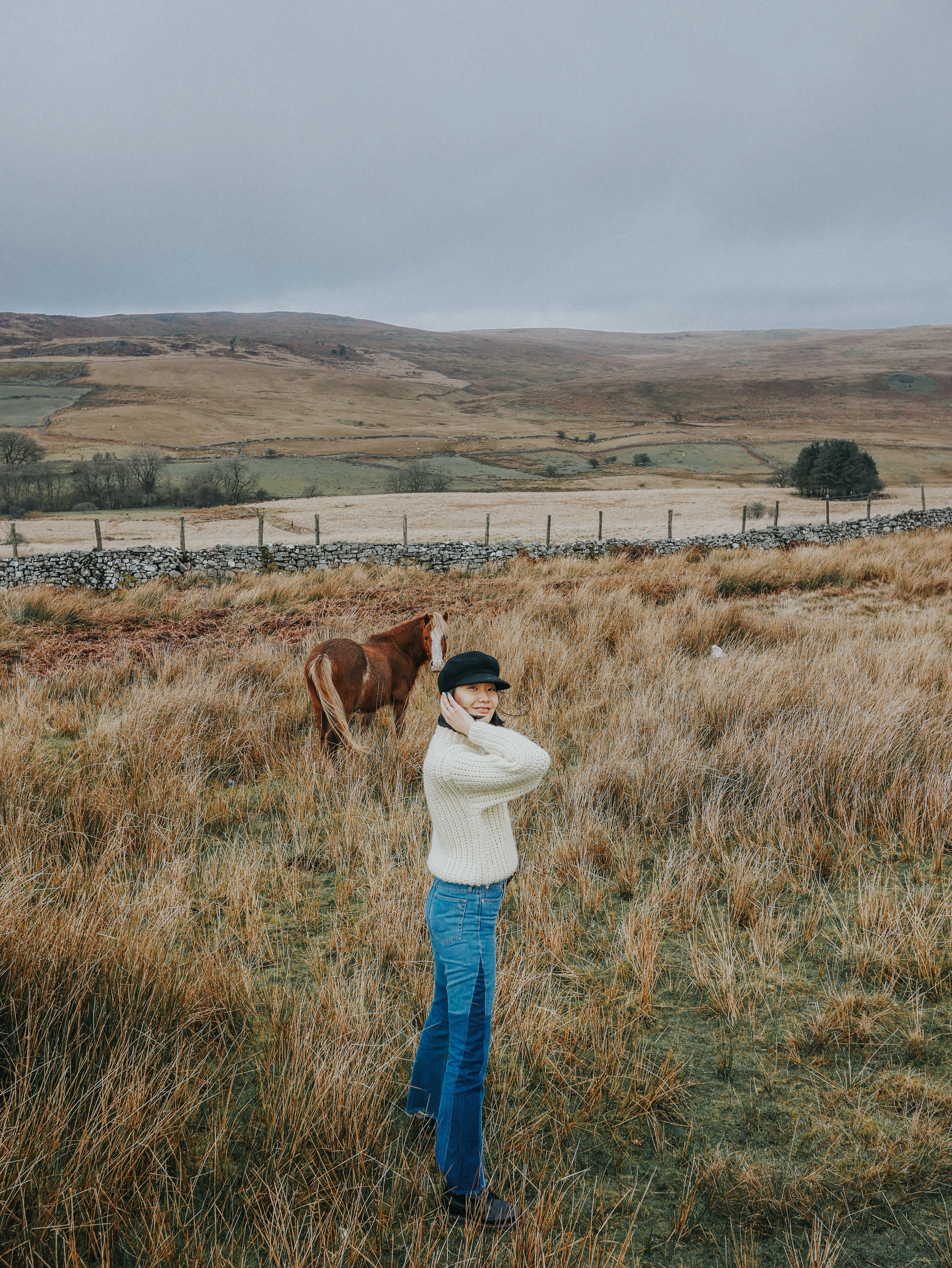 Me and a cute Welsh pony in Brecon Beacons National Park