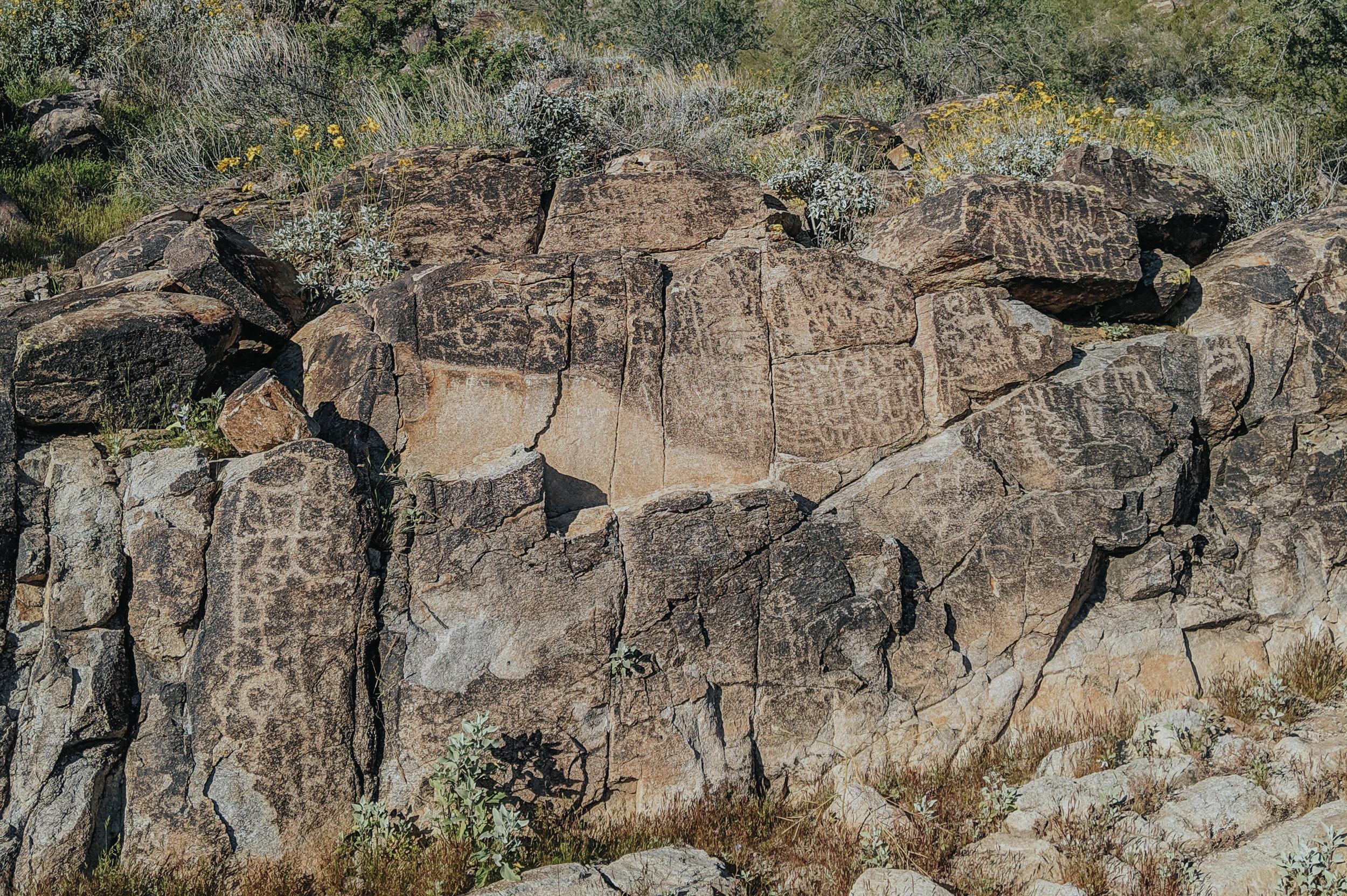 Petroglyphs at White Tank Mountain Regional Park