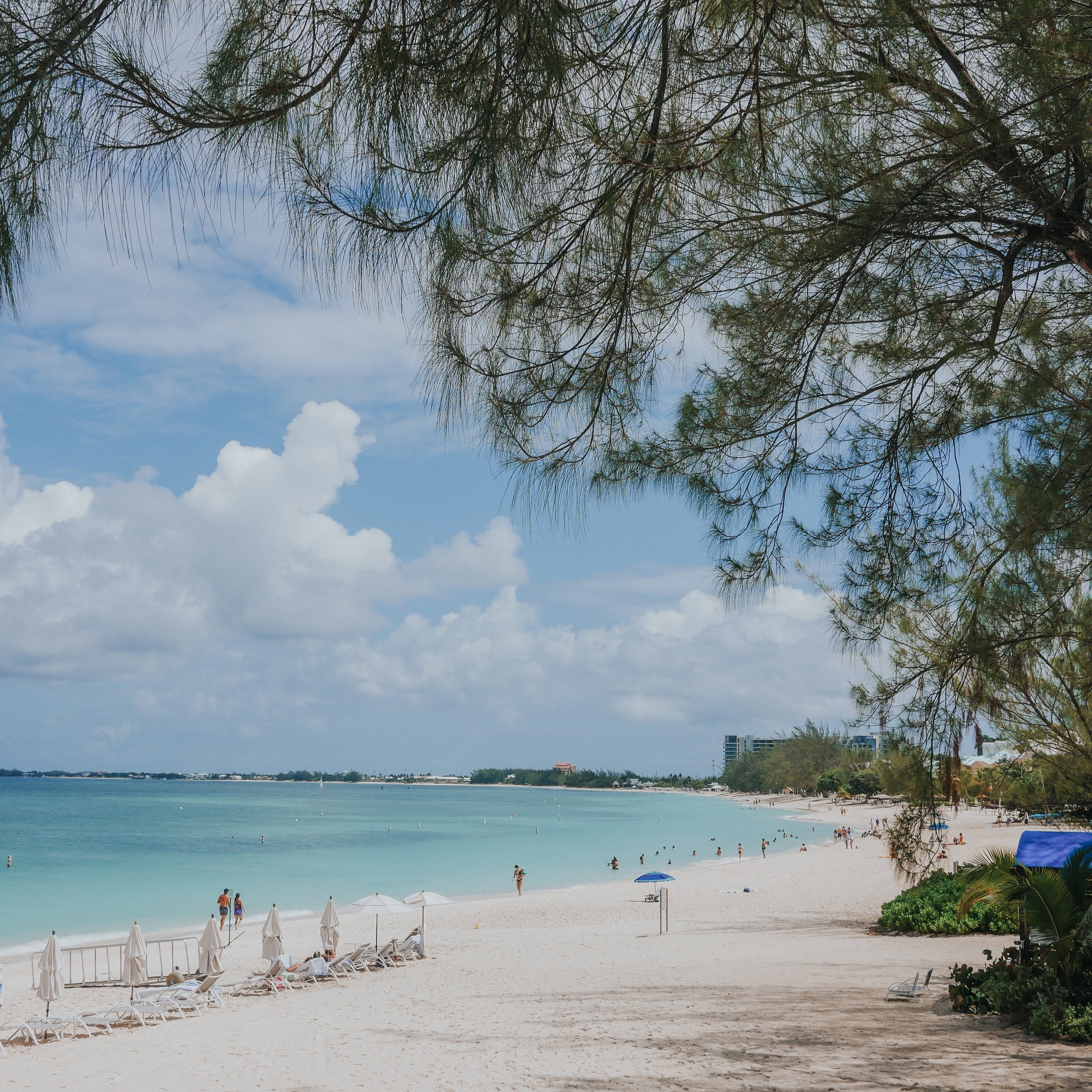 Seven Mile Beach stretches about five miles long and is lined with resorts and vacation homes of all kinds. Our section of the beach was private, made just for hotel guests
